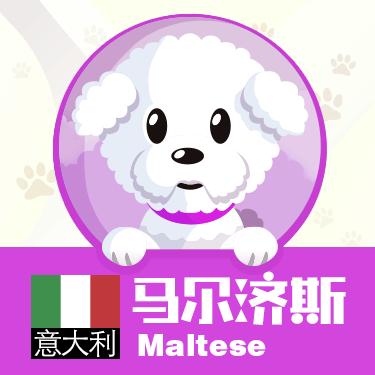 狗狗类型图-贴纸 messages sticker-2