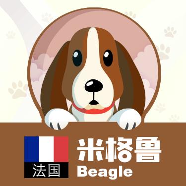 狗狗类型图-贴纸 messages sticker-1