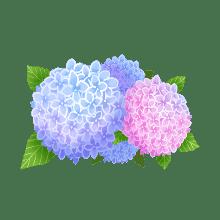 SummerS-Emoij messages sticker-11