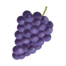 GrapePurple-Emoij messages sticker-0