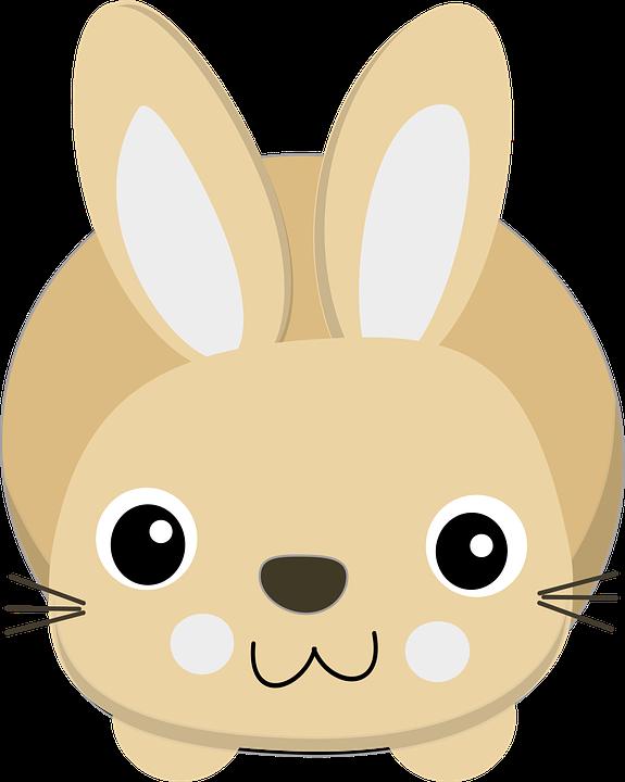 兔子贴纸 messages sticker-8