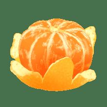 橘子小咪 messages sticker-3