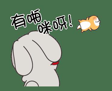 浮誇兔 messages sticker-3