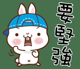 藍帽兔 messages sticker-5