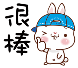 藍帽兔 messages sticker-11