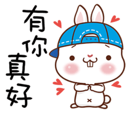 藍帽兔 messages sticker-4