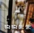 柴犬小鸡腿 messages sticker-3
