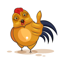 可愛的大公雞 messages sticker-0