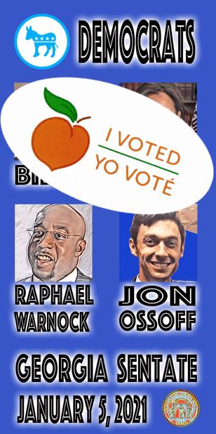 Georgia Senate Runoff messages sticker-1