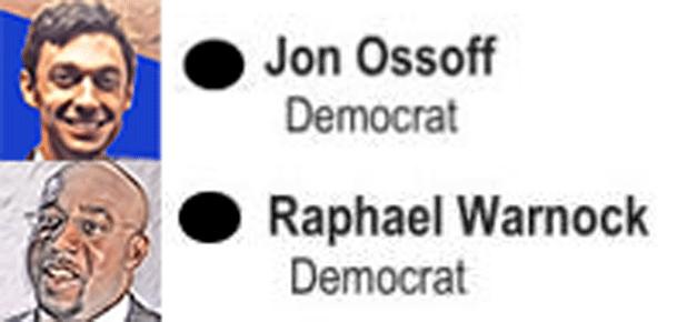 Georgia Senate Runoff messages sticker-2
