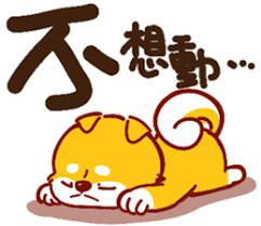 可愛的小柴犬 messages sticker-7