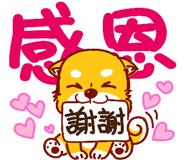 可愛的小柴犬 messages sticker-1