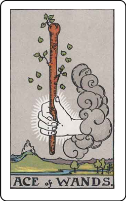 Tarot Simple: Cards & Readings messages sticker-1