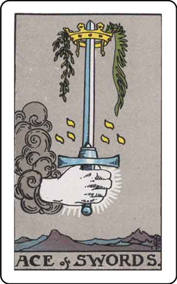 Tarot Simple: Cards & Readings messages sticker-0