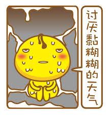 委屈的小鸡 messages sticker-11