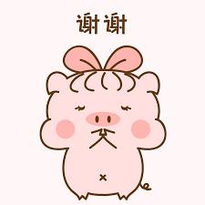猪的爱情 messages sticker-10