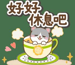 黑白貓 messages sticker-4