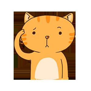 SummerCat-Orange messages sticker-6