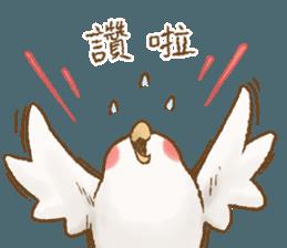 快樂的鸚鵡 messages sticker-5