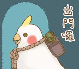 快樂的鸚鵡 messages sticker-8