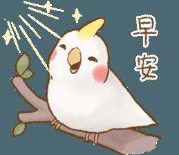 快樂的鸚鵡 messages sticker-11