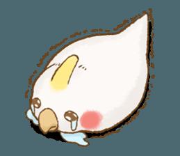 快樂的鸚鵡 messages sticker-7