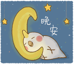 快樂的鸚鵡 messages sticker-4