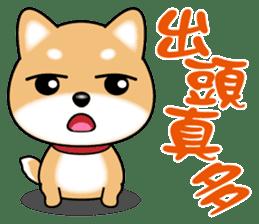 Q柴犬 messages sticker-6