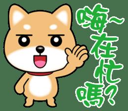 Q柴犬 messages sticker-9
