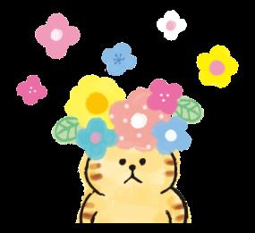 可愛的花貓 messages sticker-0