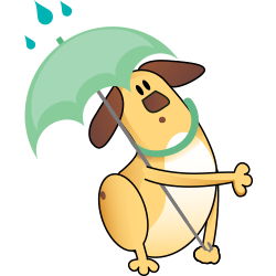 AccuWeather: Weather Widget messages sticker-7