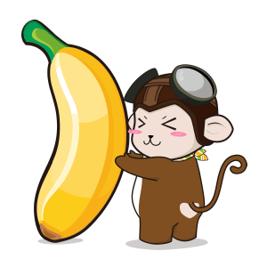 Spring Airlines messages sticker-6