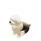 Tiny Sheep : Pet Sim on a Farm messages sticker-11