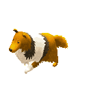 Tiny Sheep : Pet Sim on a Farm messages sticker-9