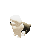 Tiny Sheep : Pet Sim on a Farm messages sticker-11