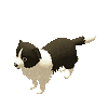 Tiny Sheep : Pet Sim on a Farm messages sticker-8