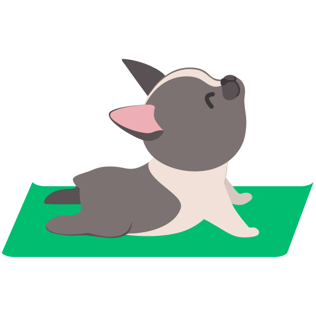 Rover—Dog Sitters & Walkers messages sticker-7