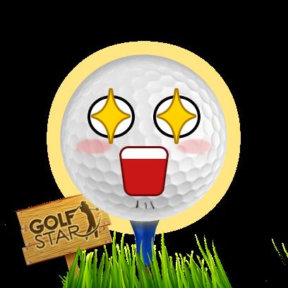 Golf Star™ messages sticker-11