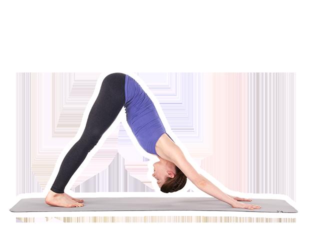 Yoga Studio: Poses & Classes messages sticker-7