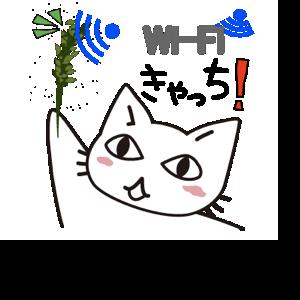 Data Usage Cat messages sticker-6