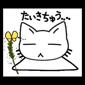 Data Usage Cat messages sticker-8