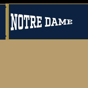 Notre Dame Mobile messages sticker-8