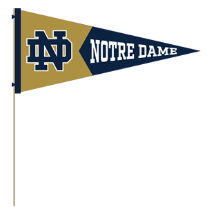 Notre Dame Mobile messages sticker-9