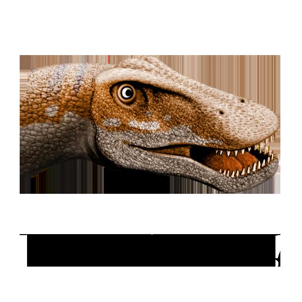 World of Dinosaurs messages sticker-8