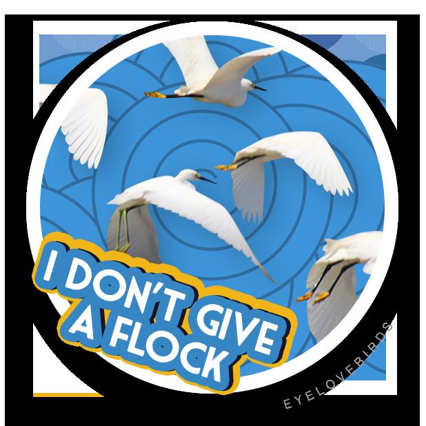 EyeLoveBirds: Bird sightings messages sticker-7