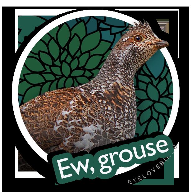 EyeLoveBirds: Bird sightings messages sticker-8