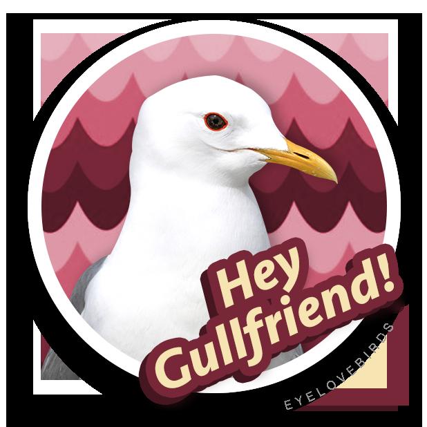 EyeLoveBirds: Bird sightings messages sticker-1
