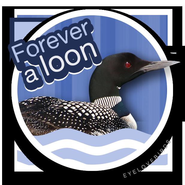 EyeLoveBirds: Bird sightings messages sticker-9