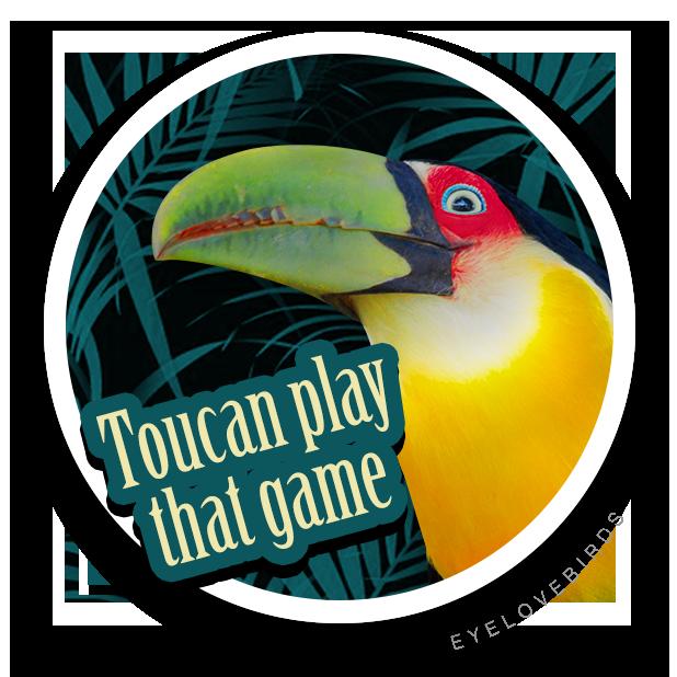 EyeLoveBirds: Bird sightings messages sticker-6