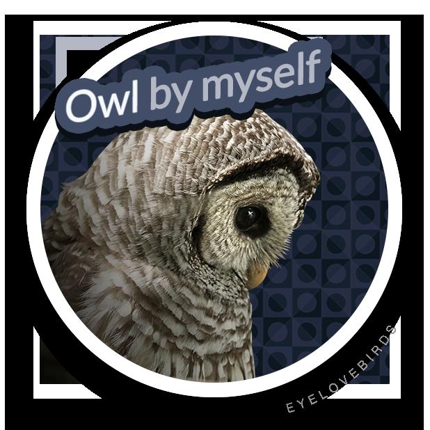 EyeLoveBirds: Bird sightings messages sticker-5